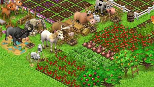 Wiejskie Życie rozwinięta farma